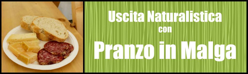 Banner Pranzo In malga