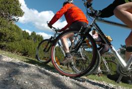 mountain-bike-asiago-(3)