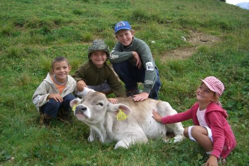 Asiago estate 2015 vacanze in montagna d 39 estate ad asiago for Offerte weekend asiago