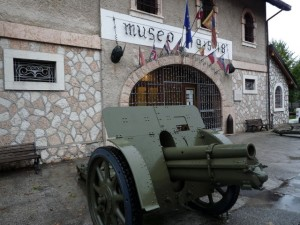 Museo Guerra Canove