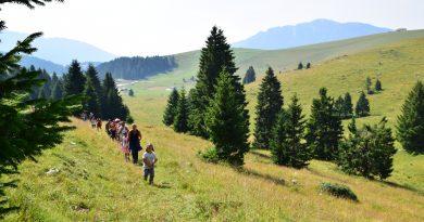 Camminare in montagna in compagnia con Asiagoestate