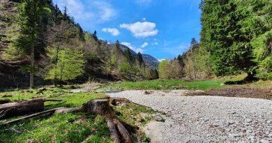 Vacanza in Montagna.. in zona verde